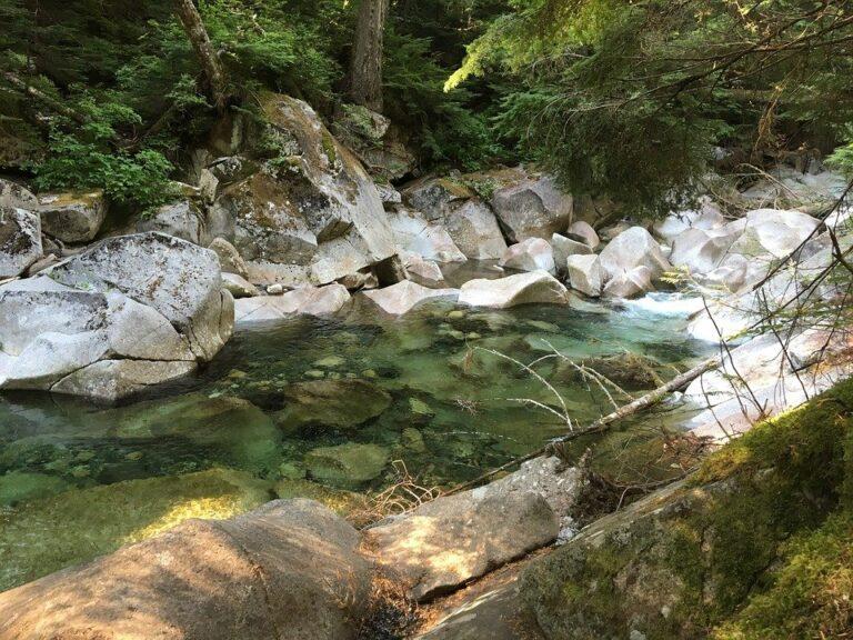 Metal Detecting a Stream, River or Creek